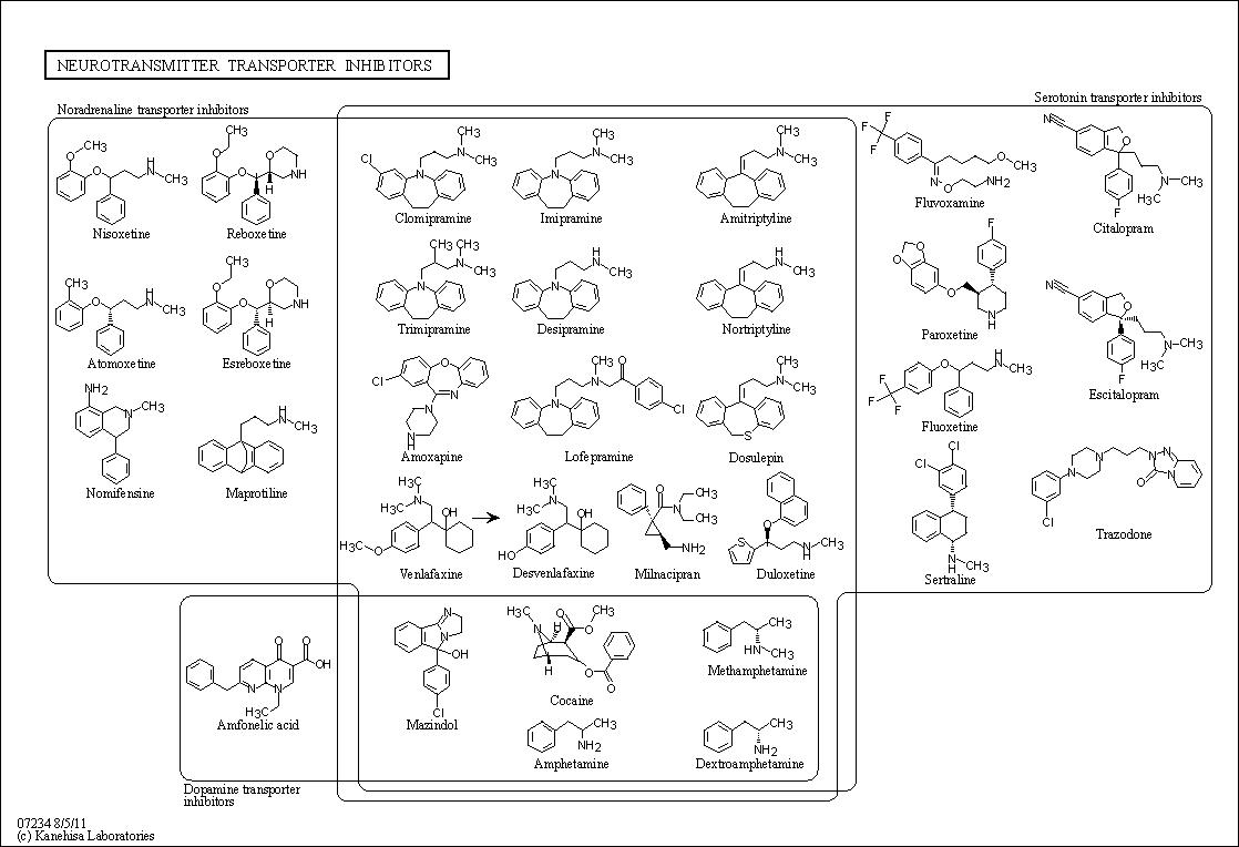 KEGG PATHWAY: Neurotransmitter transporter inhibitors - Reference