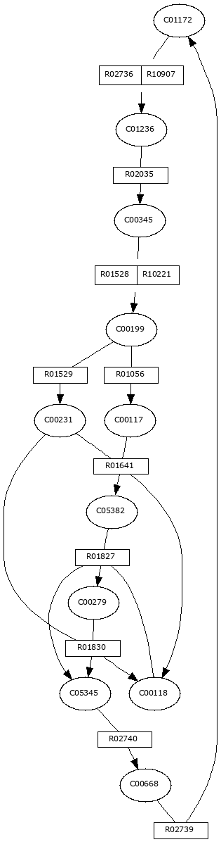 MODULE-REACTION IMAGE
